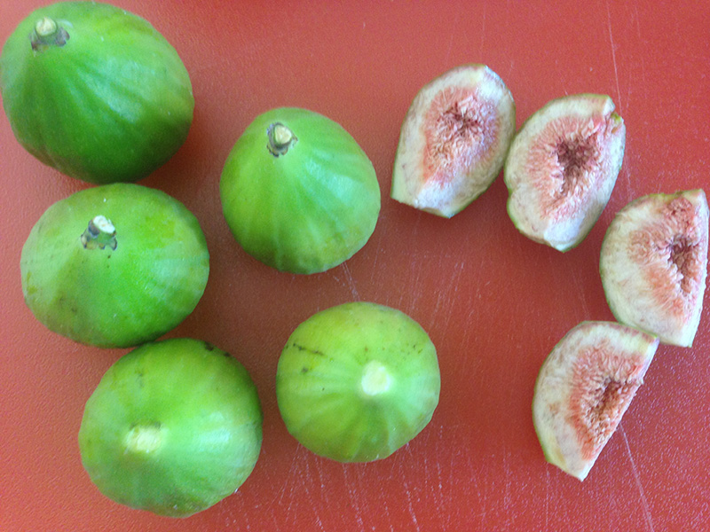 Honey Figs7
