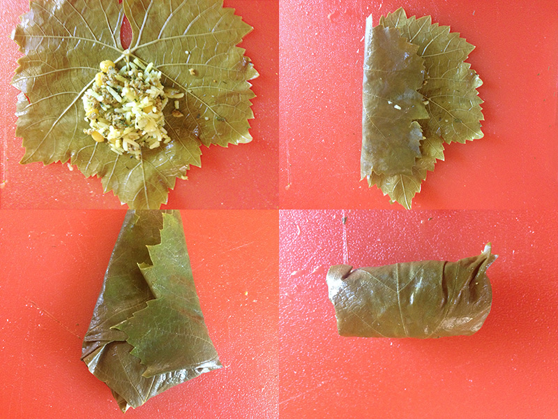 making stuffed grape leaves